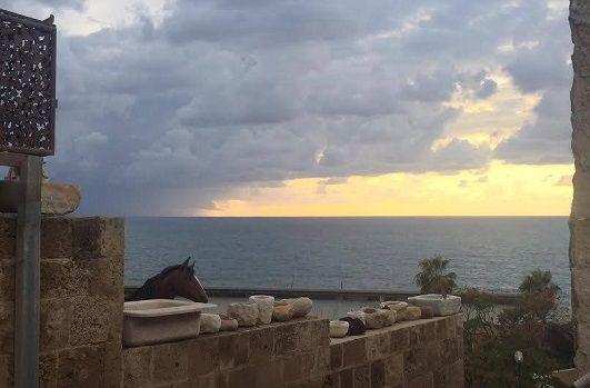 הגג ביפו-נוף לים וליפו העתיקה