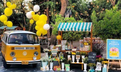 מכוניות וסירה להשכרה- מכונית צהובה ופרחים ועגלה מעץ