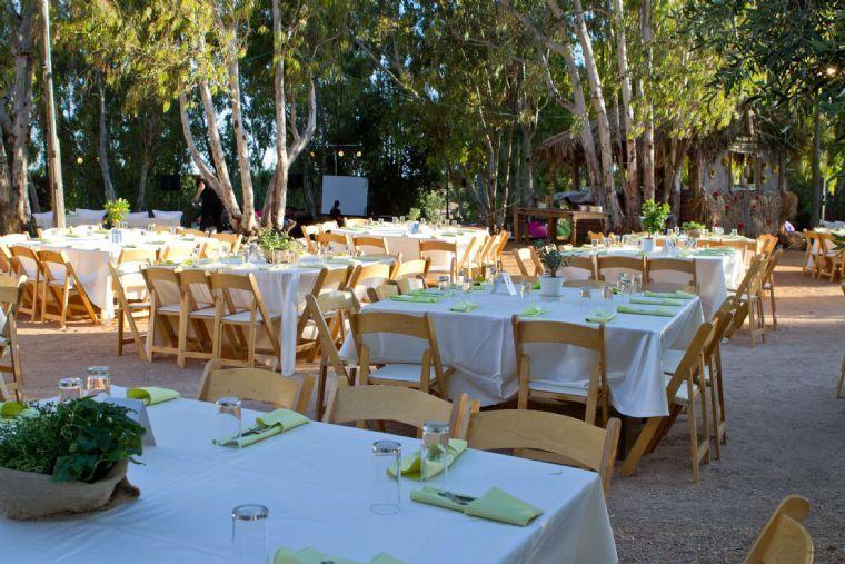 אקליפטוס בשרון- סידור שולחנות בטבע לחתונה
