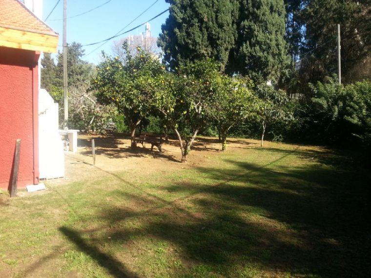 גן המשחק- מדשאות לסדנאות וימי כייף