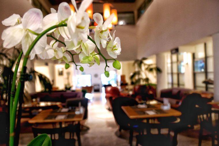העיר הלבנה – אירועים במלון עם גינה בתל אביב