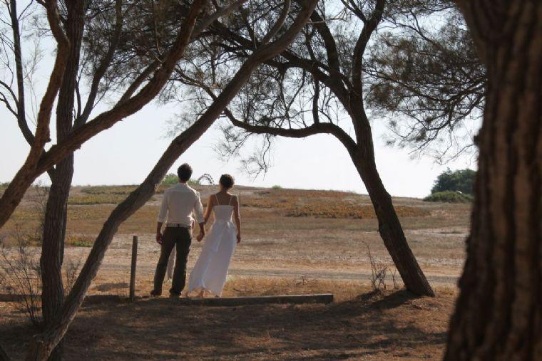 הפינה בצל האשל-סידור נוף וחתונה בשטח